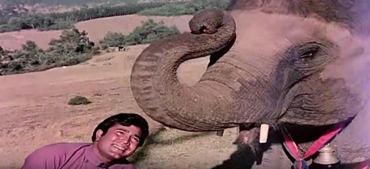 Rajesh Khanna elephant haathi mere saathi.jpg